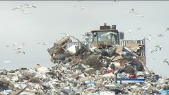 waste management yard waste
