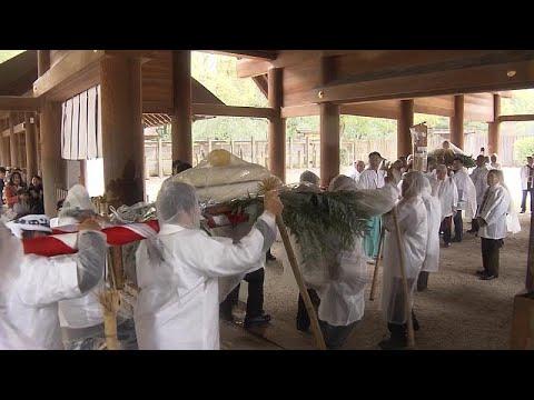 Japão: Bolos de arroz gigantes para abençoar as colheitas