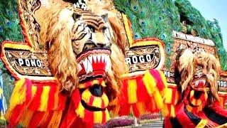 Atraksi DADAK MERAK RAKSASA - Reog Ponorogo - GIANT MASK DANCE [HD]