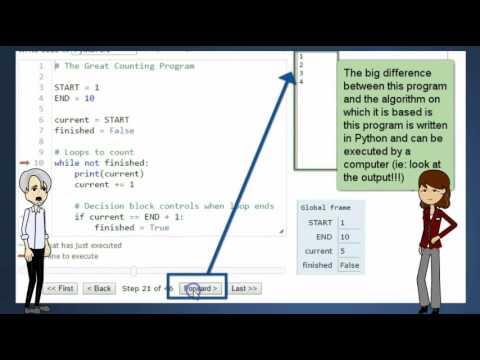Programs vs Algorithms