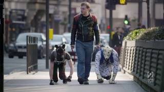 Pups of documentary life human Secret full