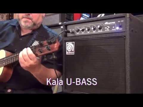 Ampeg BA-108 V2 25W 1x8 Bass Combo