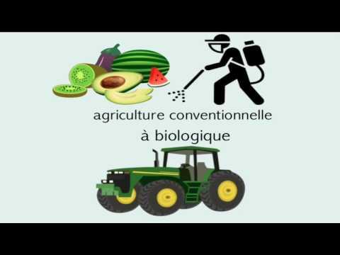Reportage explicatif Aliments biologiques