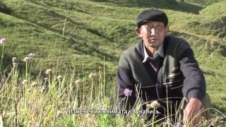 киргизский пастухов и изменение климата