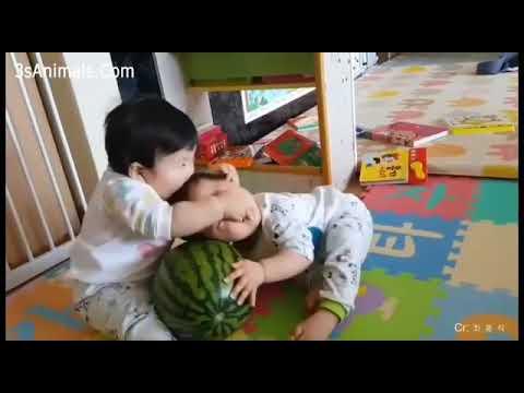 lucu-bayi-kembar-part-2