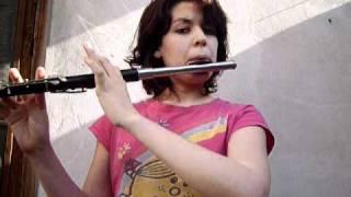 I write Sins not Tragedies (P!ATD) in Flute