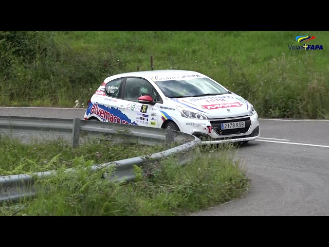 Volan FAPA 2019 - V Rally Picos de Europa - Pepe Alvarez | 3º Clasificado