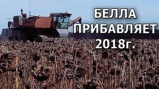 Прибавка к урожаю | Поздний посев | Гибрид Белла #СельхозТехникаТВ
