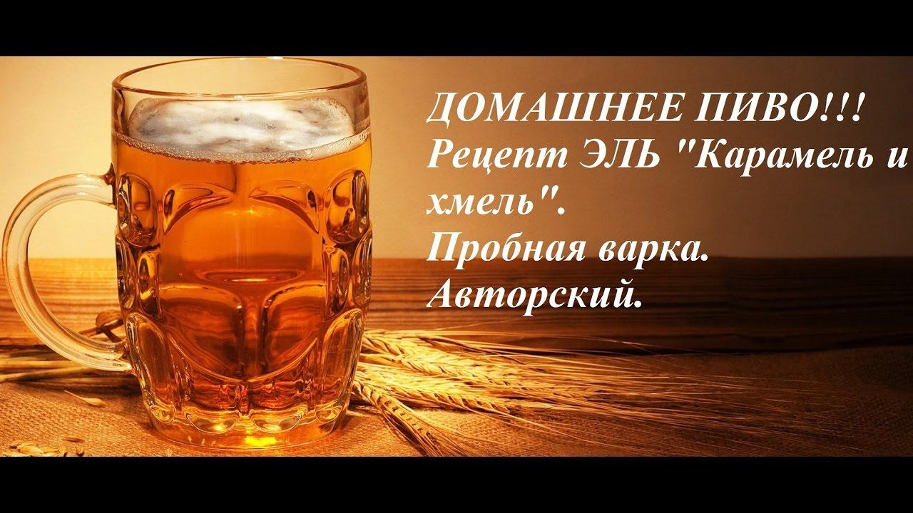 Как сделать пиво из хмеля фото 729