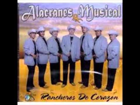Alacranes Musical / El Aguila Real