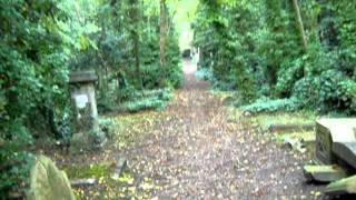 Highgate cemetery east walk. London. 27 September 2011.