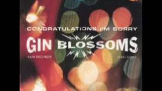 Gin Blossoms Competition Smile Acoustic