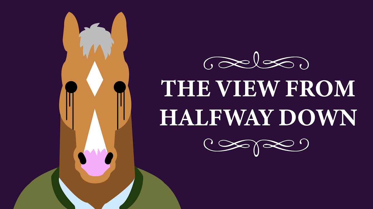 Image result for bojack horseman the view from halfway down