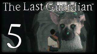 THE LAST GUARDIAN Part 5: Trico ignoriert meine Befehle! :-(