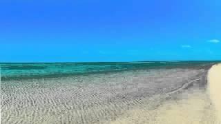 """【癒し系】自然音 海 『立体音響』浅瀬 """"Shoal Waves 3D Sound Meditation"""""""