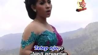 Top Hits -  Langgam Cursari Koplo Ali Ali Mripat Biru Lina