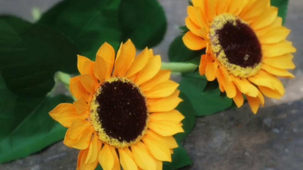 Cách làm hoa hướng dương bằng giấy mỹ thuật