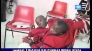 Habari TBC Taifa na Mapacha walioungana Iringa wafanya vizuri katika masomo