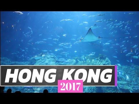 Travel Guide | Best Things To Do in Hong Kong, China (Lantau and Hong Kong Island)