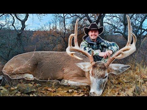 Deer Hunting - Big Buck Down