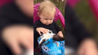 The Cutest Kids and Animals Compilation 2018 PART 2! Funny Baby Videos June 2018