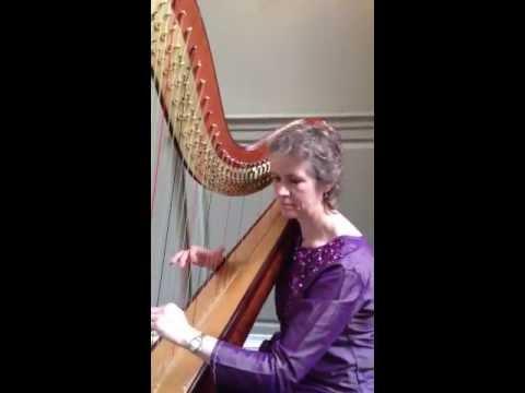 Absolute Harp performing Hai Guzarish