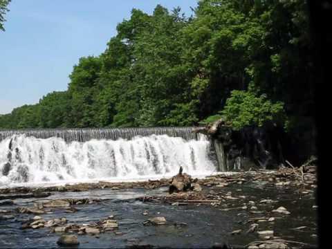 Bronx River Waterfall NYC