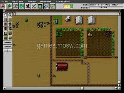 Sim Farm (PC) game, two nice fields and dumb livestock