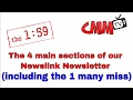 The (4) main sections of our Newslink Newsletter (including the one section that many people miss)