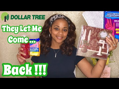 They Let Me Come Back!!! Dollar Tree Haul 2019 | Dollar Tree New Finds!!!