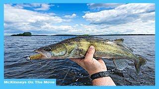 13 Walleye - 1 Hour | Saginaw Bay | Lake Huron