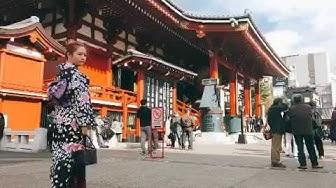 #fukuoka #peppu #tokyo #nipori