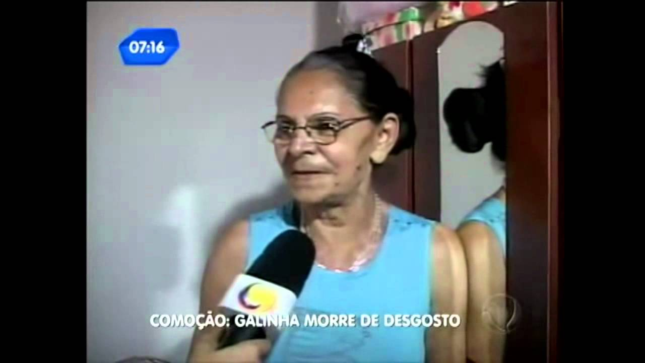 video do enterro da galinha rafinha