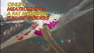 ONLINE MEATRUNNING A MESHBASE FULL OF INSIDERS   ARK Official Small Tribes PS4