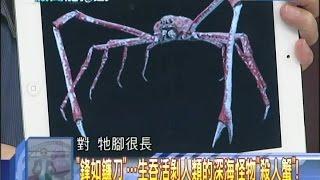 2014.09.03新聞龍捲風part3 「鋒如鐮刀」 生吞活剝人類的深海怪物「殺人蟹」!
