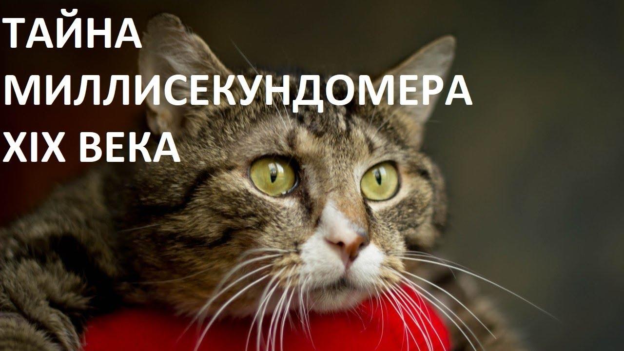 ТАЙНА МИЛЛИСЕКУНДОМЕРА XIX ВЕКА