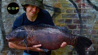 Alfie Russell | Life and Carp Fishing | Urban Carping