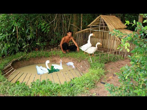 Build Swimming Pool For Goose Around Underground House
