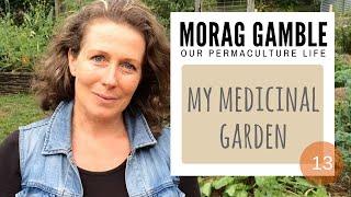 My Medicinal Garden: 7 Super Plants For A Delicious Common Cold Remedy - #13  Morag Gamble