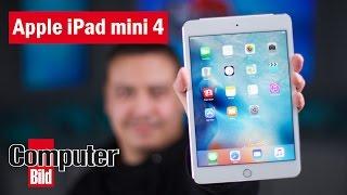 Das neue Apple iPad im Check: Besser als das Pro?