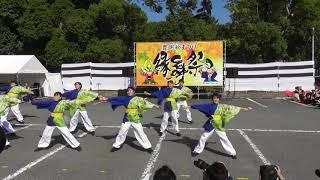 「 愛知江南短期大学よさこいサークル飛鳥 」豊明縁舞祭2017