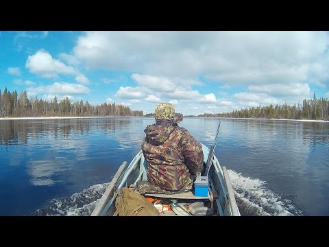 ОХОТА НА РЕКЕ В ТАЙГЕ . great HUNTING ON the RIVER IN the forest