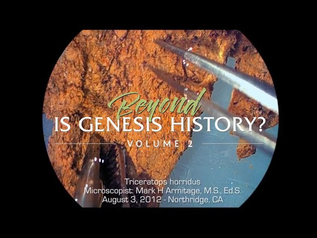 What Does Dinosaur Soft Tissue Look Like? : Beyond Is Genesis History? Clip