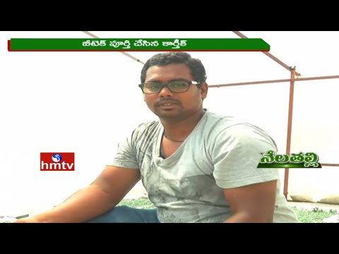 Nela Talli | Spirulina Cultivation By Young Entrepreneur Karthik | Weekend Special | 30-04-16 | HMTV