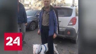 В Сибири пенсионер с бультерьером полмесяца бродили по тайге и выжили - Россия 24