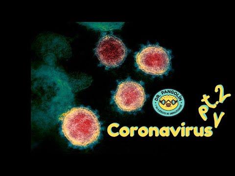 SARS-CoV-2, hipótesis y epidemiología - Dr. Pangolín y su Ejército de Animalitosbebé