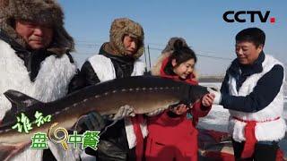 《谁知盘中餐》 20200323 万元大鱼的美味密码|CCTV农业