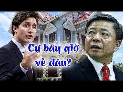 Võ Kim Cự ko những bị bác đơn tị nạn, mà toàn bộ tài sản cất giấu còn bị CP Canada tịch thu