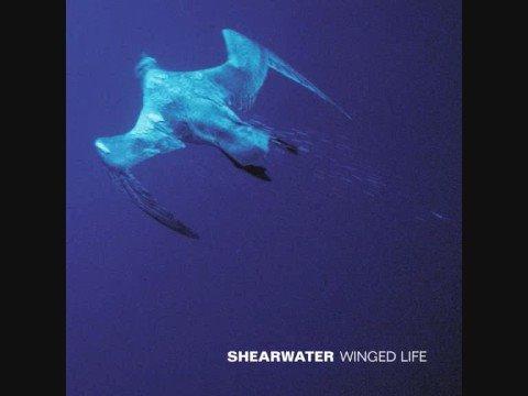 Shearwater - My Good Deed