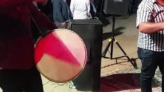 Gambar cover Davul Show